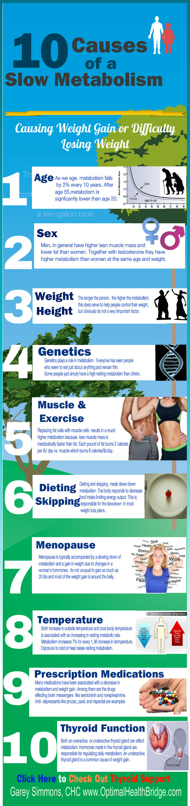 thyroid-support-info-10causes